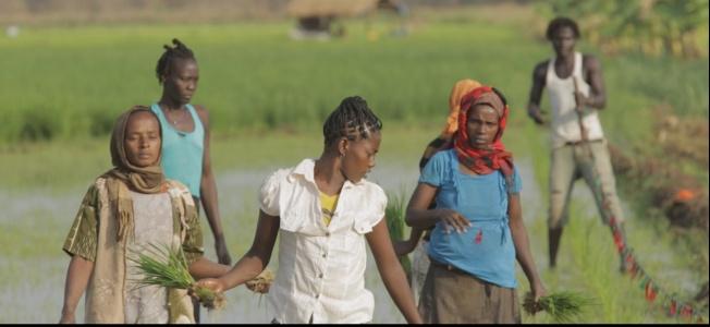 Mrtví osli se hyen nebojí: dokumentární snímek ukazuje africké novináře v jiném světle