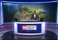 Zpravodajské relace místo hada přinesly volby